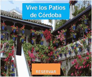 Experiencia Vive los Patios de Córdoba