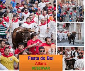 Experiencia Descubre la Festa do Boi en Allariz