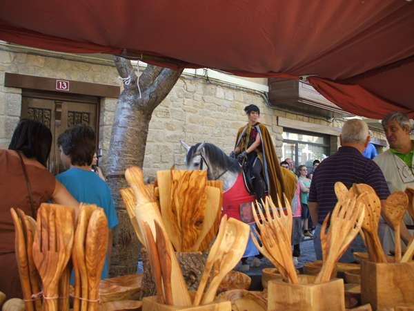 Fiestas medievales de olite - navarra - imagen5