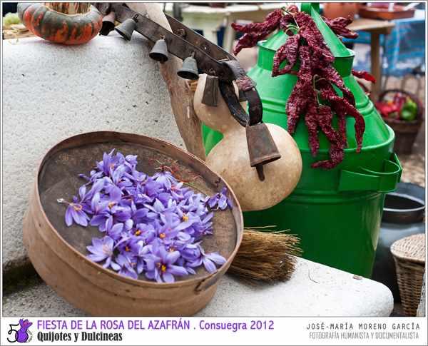 Fiesta de la Rosa del Azafrán de Consuegra - Toledo - Tradición - imagen azafran