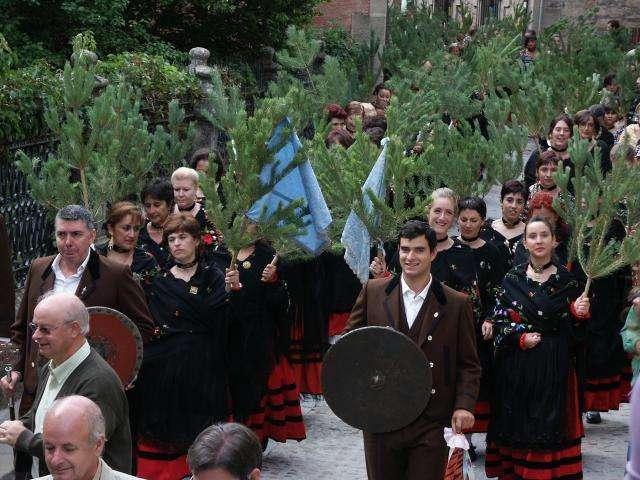 Pinochada y Baile de Respeto de Vinuesa- Soria - Imagen del Rito