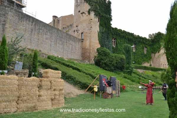 Fiestas medievales de olite - navarra - imagen6