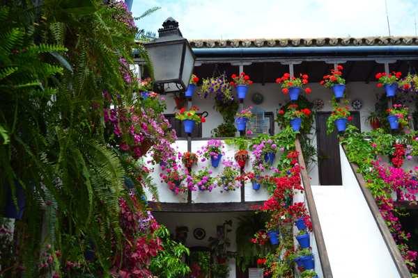 Festival de los patios de Córdoba-Fiesta-Andalucia-Imagenblog1