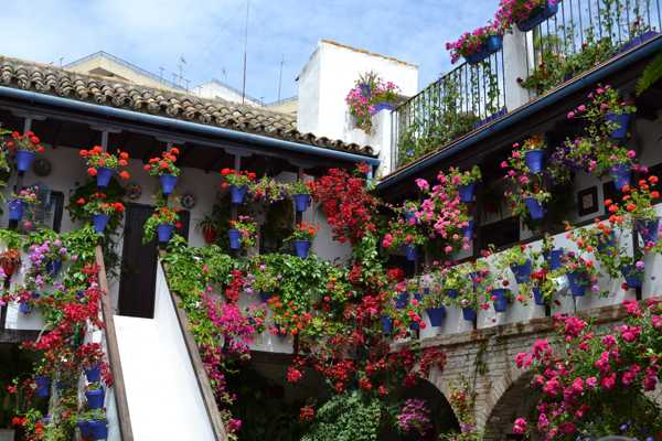 Festival de los Patios de Córdoba-Fiesta-Andalucia-imagenblog2