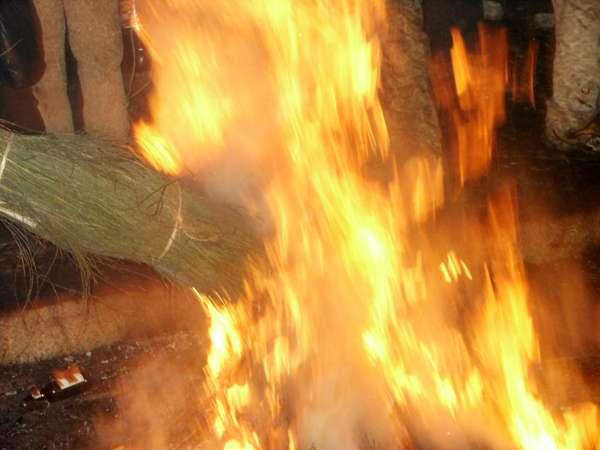 Fiesta de los Escobazos - Jarandilla de la Vera - Extremadura-imagen3
