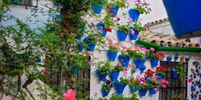 Festival de patios de Cordoba 2007 - Trueque 4