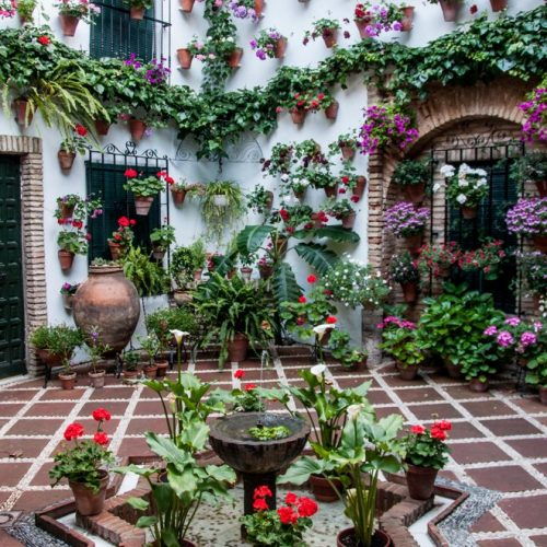 Courtyards of Cordoba Tour- Guided Tour - Tradition - image1